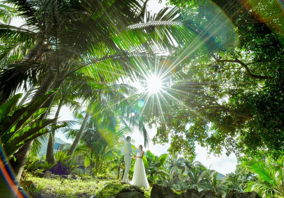 沖縄石垣島フォト・ウェディング/ Ishigaki Island Okinawa Yaeyama Yashi Photo Wedding/ サタケ八重山ヤシ記念館/挙式前撮影