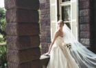 ウエディング ウェディング ドレス 石垣島 提携 フォーシス フォーシスアンドカンパニー レンタルドレス レンタル