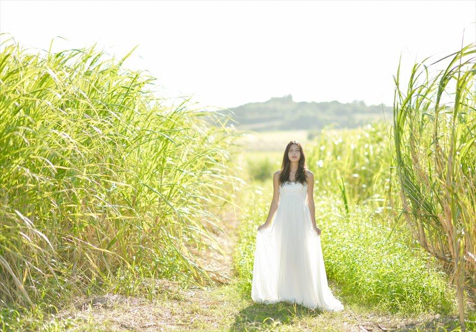 Kohama Island 2Spot<br>Wedding Photo Shooting