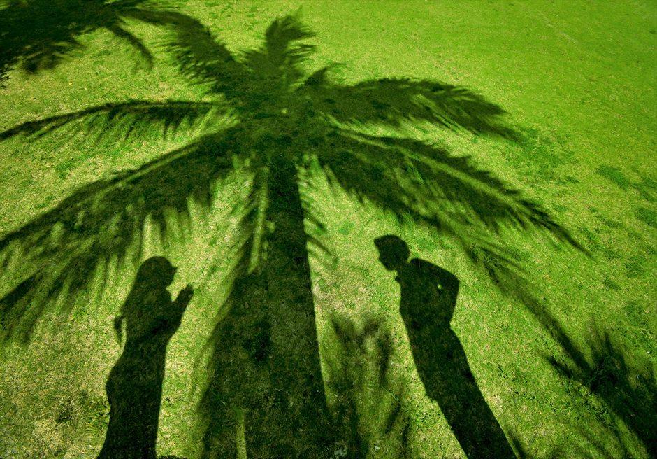 舟蔵の里・石垣島フォトウェディングココナッツツリーが生い茂るガーデン