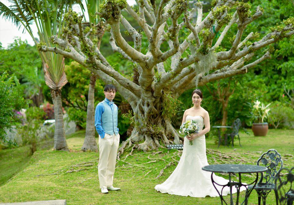 ハーブ・ガーデンPANA石垣島・沖縄がじゅまるの大木挙式前撮影