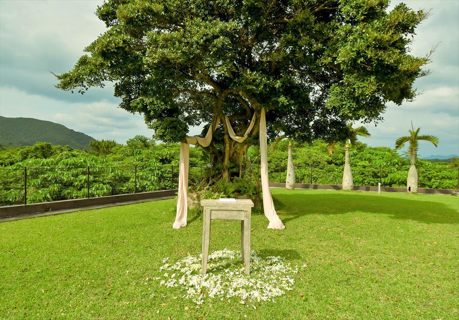 ホテル海邦川平・石垣島沖縄・結婚式│ツリー・ガーデン・ウェディング│ツリー&祭壇周り生花装飾