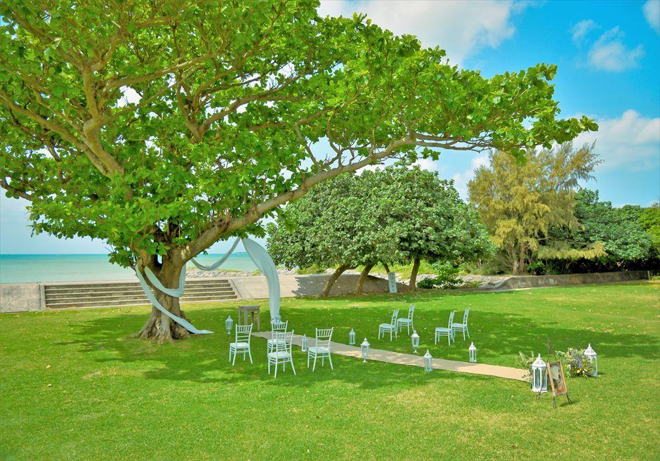 ホテル・ロイヤル・マリン・パレス石垣島結婚式│パーク・ツリー・ガーデン・ウェディング│美しい木々に囲まれたパーク内の挙式会場