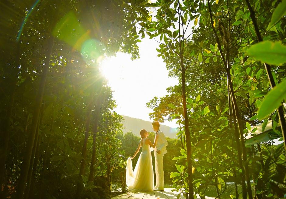 ジャングル・ホテル・パイヌマヤ西表島結婚式 マングローブ・フォトウェディグ 挙式前撮影 サンセットを望む山々