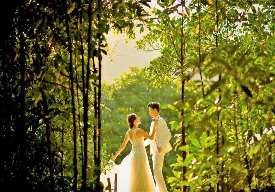 ジャングル・ホテル・パイヌマヤ西表島沖縄マングローブ・フォトウェディング