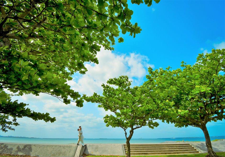 ホテル・ロイヤル・マリン・パレス石垣島緑と青のコントラストが美しい挙式前撮影