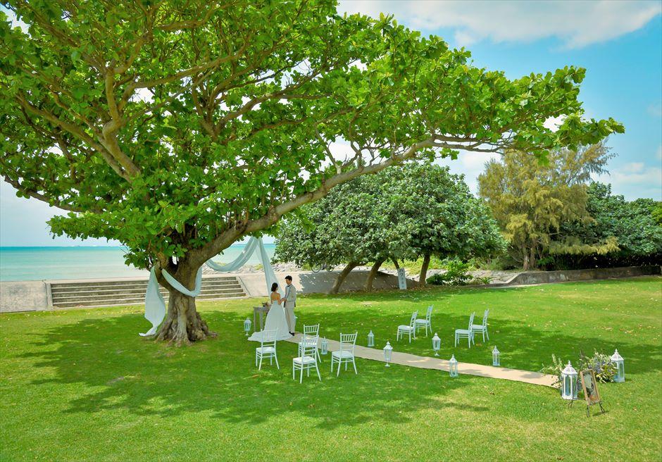 ホテル・ロイヤル・マリン・パレス石垣島結婚式│パーク・ツリー・ガーデン・ウェディング│美しい木々に囲まれたガーデン挙式