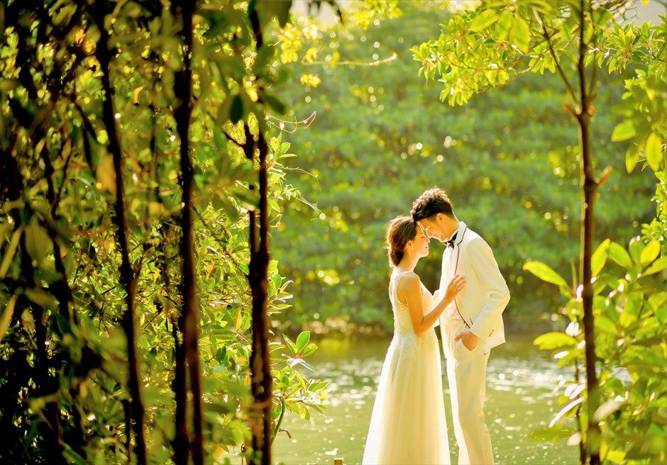 Iriomote Half Day Charter<br>Wedding Photo Shooting