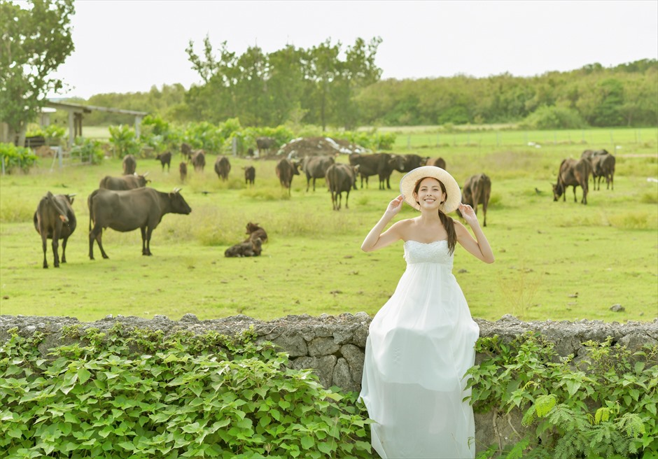 Kuroshima Island 2Spot<br>Wedding Photo Shooting