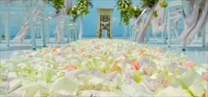 バージンロード装飾<br><br>フルフラワー<br>ホワイト・ピンク・イエロー・ミックス・他、選択可<br>