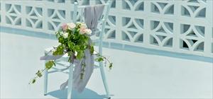 ティファニー・チェア装飾<br><br>生花&サッシュ装飾<br>ホワイト・グリーン・ピンク・レッド・他、選択可<br>