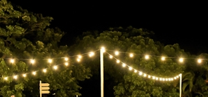 バルブ・ライト<br><br>バルブ・ライト20個4セット&電源<br>支柱5本&鉄製台座5セット<br>