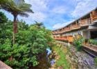パイヌマヤ 西表島 ジャングルホテル