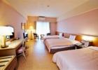 西表島 パイヌマヤ ジャングルホテル 客室