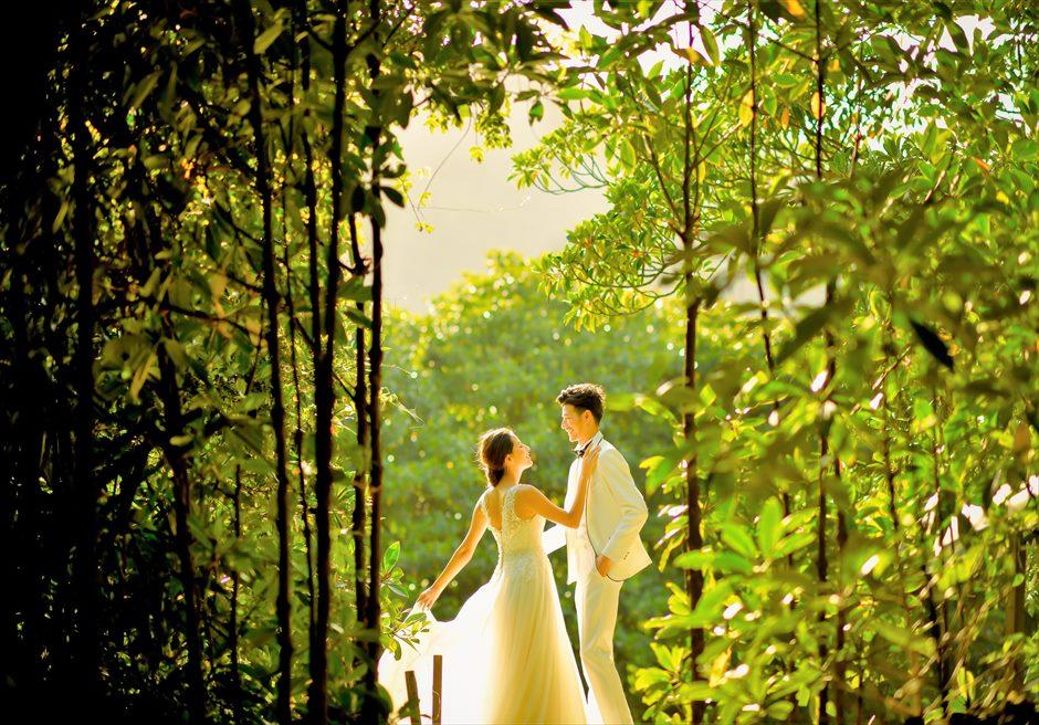 Iriomote Mangrove<br>Wedding Photo Tour