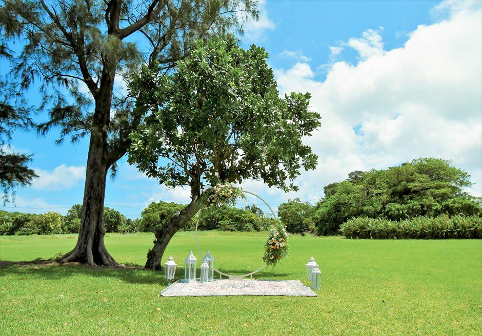 ツリーガーデン セレモニー・フォトウェディング/ サークルアーチ+祭壇+カーペット+ランタン+アップグレード生花装飾 ¥298,000
