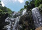 沖縄 西表 ジャングルホテルパイヌマヤ オプション トレッキングツアー