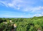 沖縄 西表島 ジャングルホテルパイヌマヤ 挙式 ハネムーン ツアー